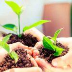 10 consejos para cuidar nuestro Planeta